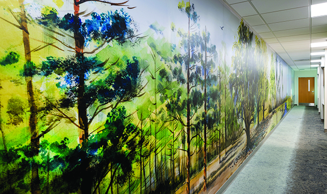 Simplifying Supergraphics In Healthcare Environments
